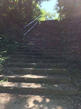 Final batch of stairs on the secret neighborhood back door route