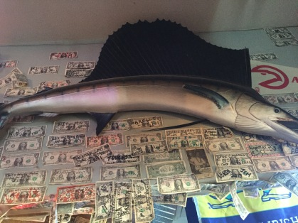 Fish and Dollar bills on the wall