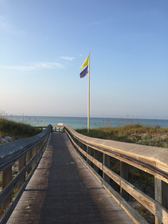 These are the flags at Inlet Beach (I think)
