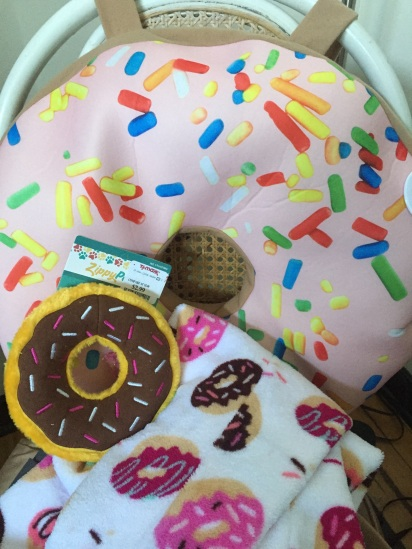 The donut costume (consisting of many components) stayed home.