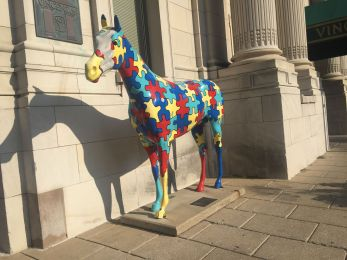 HORSES! Everywhere!!!